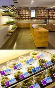 A high-design marijuana dispensary