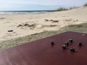 Playing Walnut Studiolo travel dice on the Oregon Coast beach