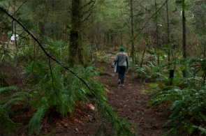 Our forested walk home
