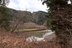 Wintertime along the Nehalem River