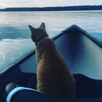 I love being in the canoe!