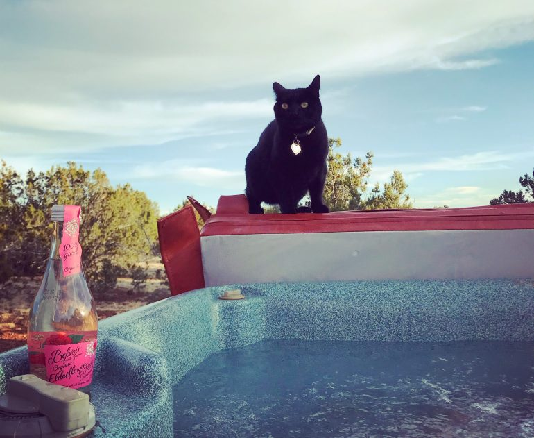 Hot tub cat at a remote cabin!